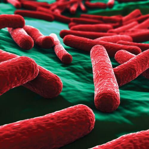 Microbe dans les conduits de ventilation